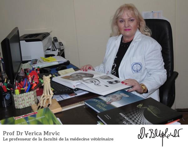 Prof Dr Verica Mrvić